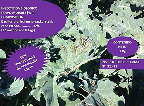 CULTIVERS Bacillus thuringiensis kurstaki 32 wg de 1 kg. Insecticida biológico contra orugas. Ideal para todo tipo de verduras y hortalizas