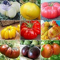 Pinkdose® 2018 Heißer Verkauf Tomaten Mixed Giant Gemüsesamen