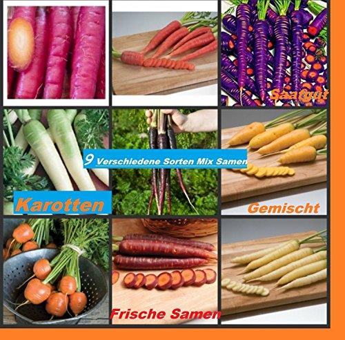 40x-samen-von-9-verschiedene-sorten-karotten-hingucker-pflanze-saatgut-raritat-garten-mohren-gemuse-