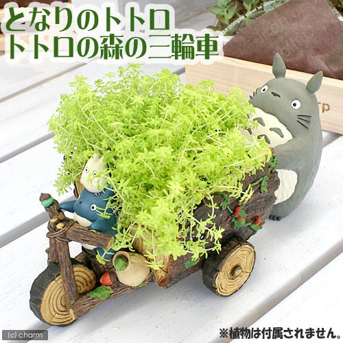tricycle-planter-covers-ghibli-my-neighbor-totoro-totoro-and-the-forest