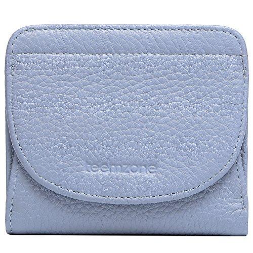 Geldbörse Damen Klein Leder RFID Schutz mit Münzfach Mini Portemonnaie Portmonee Brieftasche Frauen TEEMZONE(Rosa)