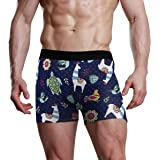JIRT Slip Boxer da Uomo Alpaca Tartaruga Marina Intimo per Uccelli Maschile Traspirante Tronchi Elasticizzati Sacchetto rigon