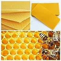 Faway Bee Honey Feuilles Ruche Cire Fond de teint Nid d'abeille Apiculture équipement Bee Peigne Miel Cadre 30pcs