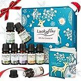 Ätherische Öle Set, Luckyfine 8 x 10ml 100% Pure Aroma Öle Set ideal für Duftlampen, Reine Aromatherapie Fragrance Oil Diffuser Duftöl Kit, Ideal Auswahl für Geschenk