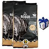 2 x 13 kg Bozita Robur Maintenance Hundefutter weizenfrei alle Rassen + Geschenk
