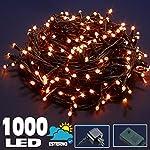 Bakaji Catena Luminosa 1000 Luci LED Lucciole BIANCO CALDO 50 Metri Controller 8 Funzioni Impermeabile per uso Interno ed Esterno 24 V, Luci di Natale Cavo Verde Luci per Albero di Natale