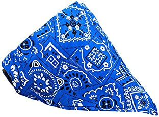 Foodie Puppies Nylon and Plastic Adjustable Neck Scarf Neckerchief Bandana Collar for Cat Pet (FP_scarf_assorted)