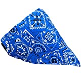 #8: Foodie Puppies Nylon and Plastic Adjustable Neck Scarf Neckerchief Bandana Collar for Cat Pet (FP_scarf_assorted)