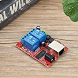 Dailyinshop LAN Ethernet Relay Board Delay Switch TCP/UDP Controller Module WEB Server(Color:red with blue)