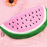 Leisial Watermelon School Pencil Case and Womens Cosmetics Bag 20cm * 10cm pink