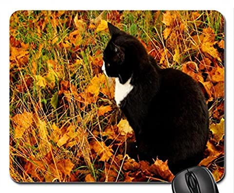 Autumn Kitty for my friend Ramya :) Mouse Pad, Mousepad (Cats Mouse Pad)