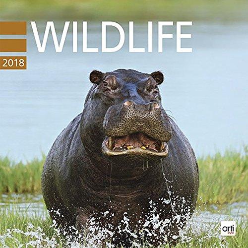 Wildlife 2018 - Broschurkalender: Jahreskalender