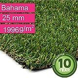 Kunstrasen Rasenteppich Bahama für Garten - Florhöhe 25 mm - Gewicht ca. 1996 g/m² - UV-Garantie 10 Jahre (DIN 53387) - 2,00 m x 0,50 m | Rollrasen | Kunststoffrasen