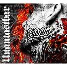 Schuldig  (Limited Picture LP) [Vinyl LP]