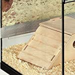 Skyline Small Terrarium Pet Cage - Perfect for Small Animals which like to Burrow - Includes Wooden Accessories and… 9