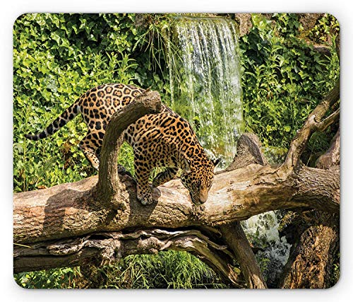 Safari Mouse Pad, Jaguar Cat on Tree Trunk Waterfall Endangered Species Wild Life Fast Animal, Standard Size Rectangle Non-Slip Rubber Mousepad, Green Light Brown (Trunk Floral)