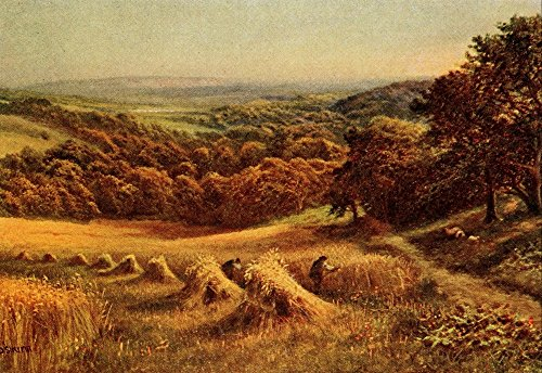 daniel-sherrin-in-unfamiliar-england-1910-sussex-harvest-field-kunstdruck-6096-x-9144-cm