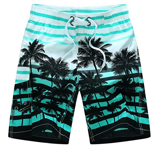 Men's Casual Coconut Trees Beach Shorts DarkTurquoise