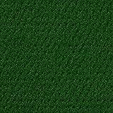 Kunstrasen Rasenteppich mit Noppen | Höhe ca. 10,3mm | 133, 200 und 400 cm Breite | hell-grün | Meterware, verschiedene Größen | Größe: 5 x 4 m