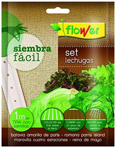 Flower 51165 51165-Siembra fácil lechugas, No No aplica, 19x2x19 cm