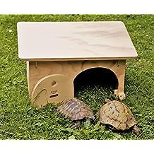 Tartarughe di terra for Laghetto tartarughe esterno