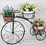 Nayab Handicrafts Black Medium Tricycle Planter Without Pots