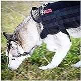 Generic OneTigris Army Taktisches Hundegeschirr Molle Weste Militärgeschirr mit Traglager SWAT Hundejacke, Orange, XL