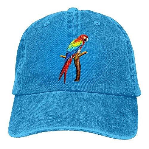 Parrot Denim Baseball Caps Hat Adjustable Cotton Sport Strap Cap for Men Women Cap Design -