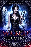 Wicked Seduction: A Cursed Angel Novel