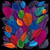 #9: Pitaara Box Dark Autumn Leaves - SMALL Size 16.0 inch x 16.0 inch - UNFRAMED SELF-ADHESIVE PEEL & STICK GLOSSY LAMINATED PVC VINYL WALL STICKERS & WALL DECALS : Wall Paintings : DIGITAL PRINT Wall Posters Artwork like Hand Paintings : Decorative Home Interior Wall Décor Photo Gifts for Bedroom, Living Room, Drawing, Dining Room, Kitchen, Office, Reception, Bathroom, Outdoor, Gallery, Hotels, Restaurants, & Balcony : Floral : Digital Art