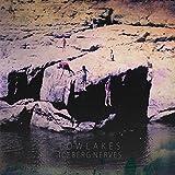 Songtexte von Lowlakes - Iceberg Nerves