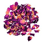 GLOREX, Blüten, Rosenblüten, 12 x 8.5 x 2 cm