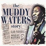 Muddy Waters Story