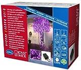 Konstsmide 3631-450 Micro LED Lichterkette/für Außen (IP44) / 24V Außentrafo/mit 8 Funktionen, Steuergerät und Memoryfunktion /120 purpure Dioden/schwarzes Kabel