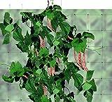 tenax Rete Flora Verde H.200 ML.10