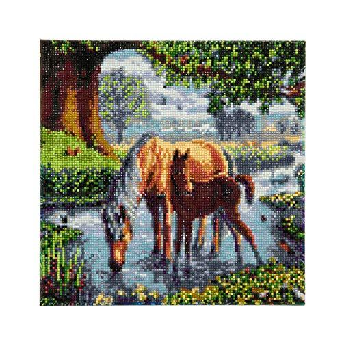 CRYSTAL ART CAK-SC1 30x30cm Framed Kits, Multicolor