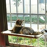 Gatto amaca finestra animale domestico Gatto Letto Sunny seduta beige