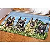Amzbeauty Home Fu?matte Indoor Hunde Drucken H¨¹bsche Fu?matte F¨¹r Den Eingang Im Inneren Wasser Absorbierende Rutschfeste Waschbare Teppich