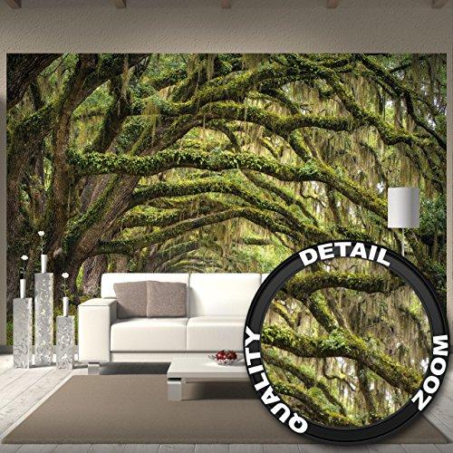 fotomurale-natura-quadro-decorazione-bosco-paesaggio-estate-foresta-muschio-mistico-oak-quercia-vial