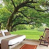 Decorazione di estensione 3D visione stereo, soggiorno, murales pastorale, divano TV, pittura di sfondo, paesaggio, foresta di prateria, 300 × 210 cm