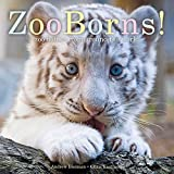 ZooBorns!: Zoo Babies from Around the World by Andrew Bleiman (2015-08-18)