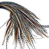 Federn für haare