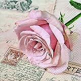 20 Servietten Postcard rose – Herzliche Postkarte / Liebe / Rosenblüte 33x33cm
