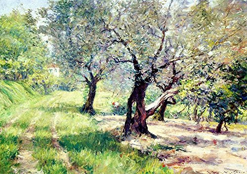 Das Museum Outlet-Die Olive Grove, 1910-A3Poster