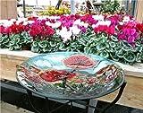 Smart Garden Abbeveratoio per Uccelli in Vetro Dipinto a Mano Uccello da Bagno Modello Poppy UV Resistente alle intemperie