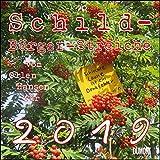 Schild-Bürger-Streiche 2019 - Von Pit Schulz - Broschürenkalender - Format 30 x 30 cm