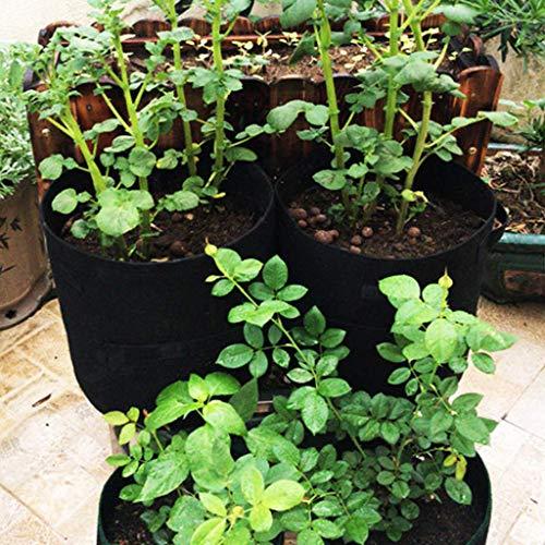 Happy-day DIY Pflanztöpfe Tomaten-Übertopf Garten Gemüse Pflanzgefäß Container 3 Stück Pflanzen-Gewächshüllen Vlies-Topf Gartenarbeit Gemüse Kartoffel-Pflanztbeutel (Blender Topf)