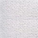 WaW Fotografie Fotoleinwand Hintergrund 3x3m Grau Weiße Ziegel Rustikale Mauer Stoff Studiohintergründe Foto Kulisse Hochzeit Porträt Fotoshooting