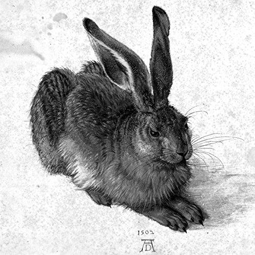 Bilderdepot24 Vlies Fototapete Albrecht Dürer - Alte Meister - Feldhase - schwarz Weiss - 100x100 cm - mit Kleister - Poster - Foto auf Tapete - Wandbild - Wandtapete - Vliestapete (Schwarz Und Weiß-unkraut-poster)