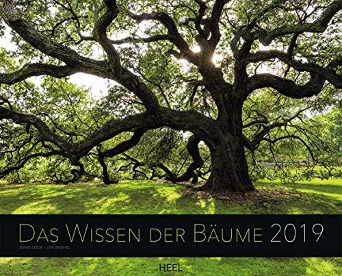Das Wissen der Bäume 2019: Inspierierende Baumriesen mit Geschichte